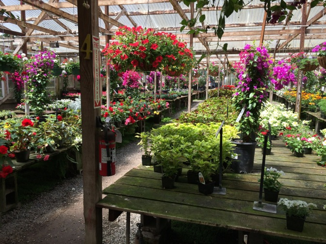 Half Moon Bay Nursery in Half Moon Bay, California