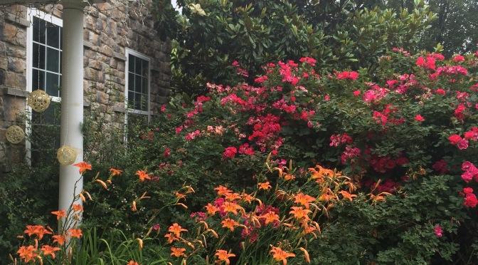 Banu's Emerald Green Philadelphia Garden