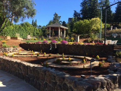 Veena Manis South Bay Garden Gem Surreyfarms A Serene Haven In