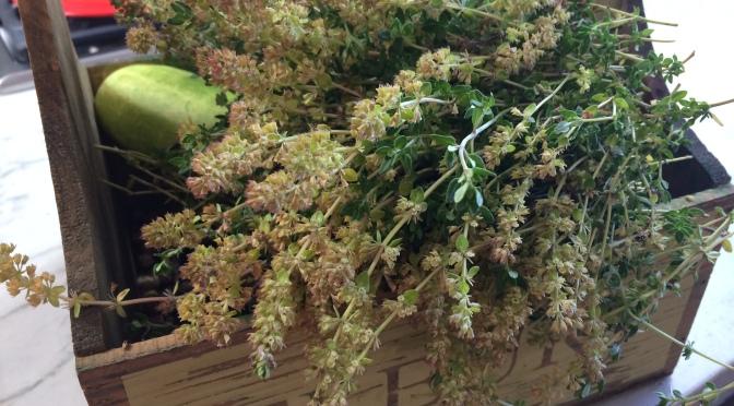Homegrown Dried Herbs 🌿