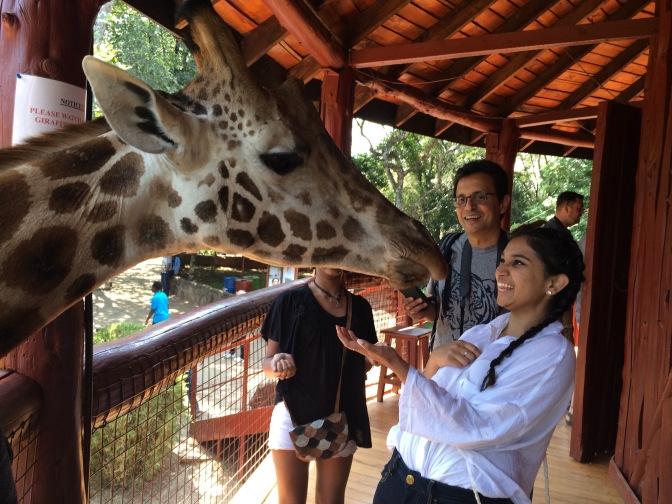 Visit to The Giraffe Centre in Nairobi, Kenya