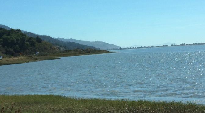 A Scenic Drive to Bolinas Lagoon, California