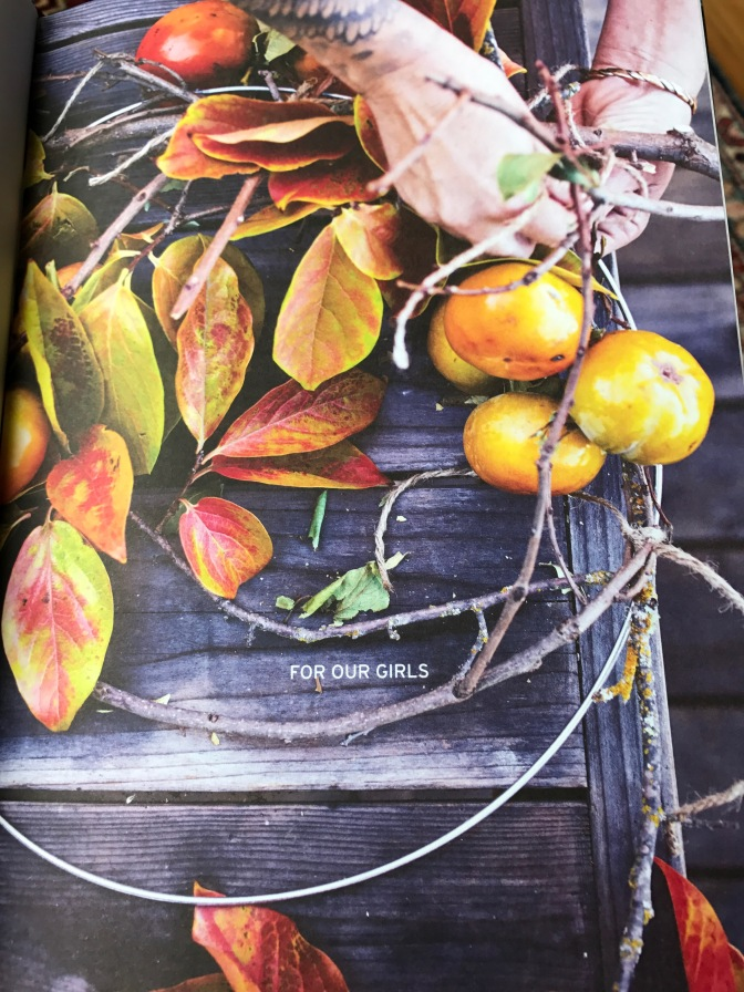 Harvest. Unexpected Projects Using Extraordinary Garden Plants by Stefani Bittner & Alethea Harampolis