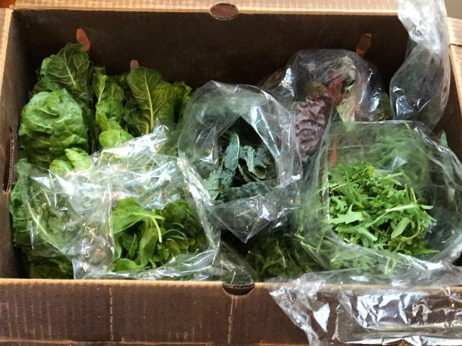 A Farmer's Market Friendship & A Giant Delivery of Farm Fresh Greens