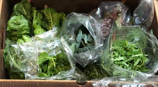A Farmer's Market Friendship & A Giant Delivery of Farm Fresh Greens