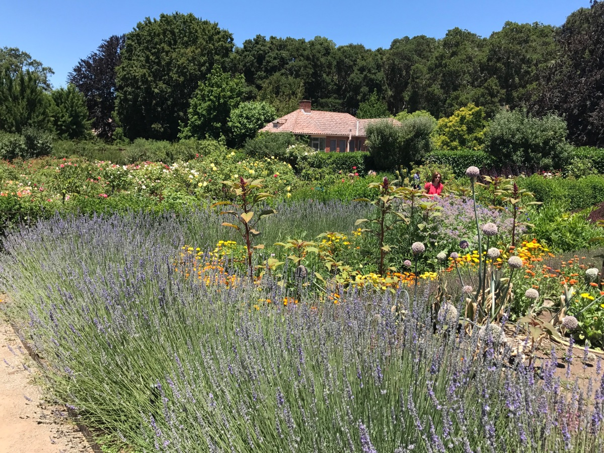 """FIght for a just cause; LOve your fellow man; LIve a good life."" FILOLI Gardens in the Summer"
