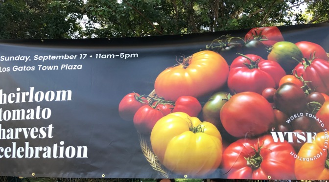 Heirloom Tomato Harvest Festival in Los Gatos, California