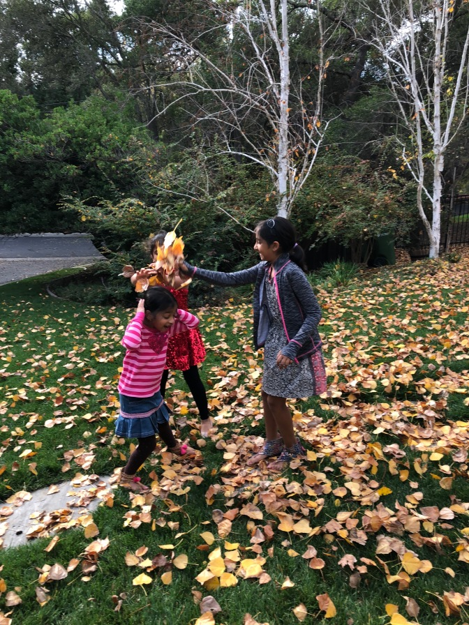 Last Breath of Autumn & A Leaf Throwing Party