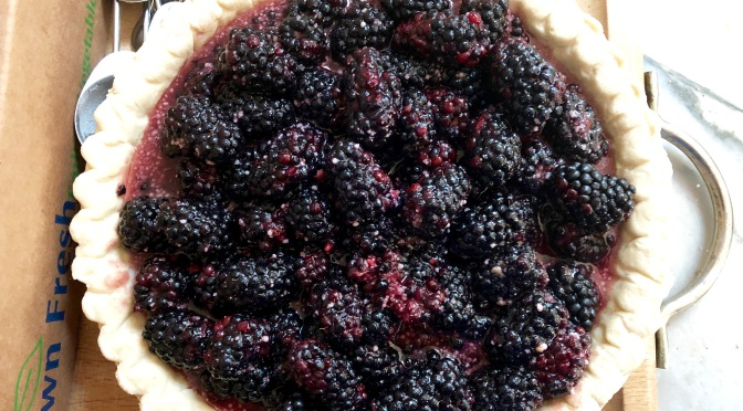 Blackberry Port Pie