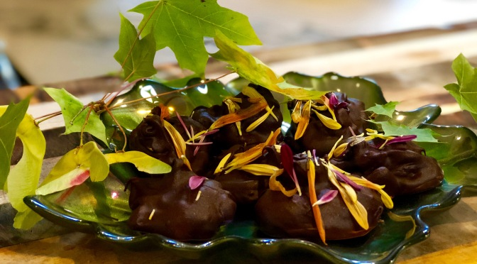 Orange Ginger Dark Chocolate Drops with Chrysanthemum Petals