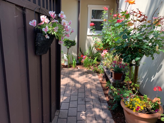 A Peek Inside the Garden Gate. A Mother's Day Patio Mini Makeover