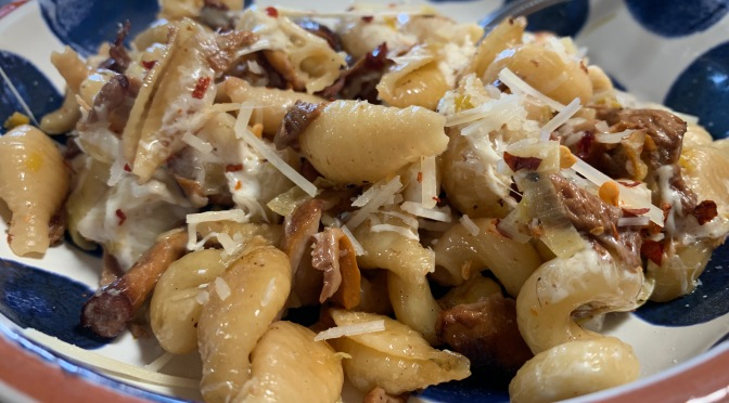 Conchiglie Pasta with Chanterelle  Mushrooms and Leeks