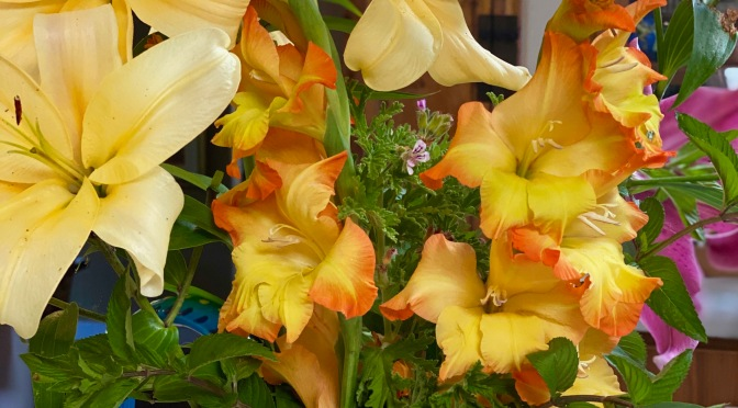 Friday Flowers. Lilies and Glads